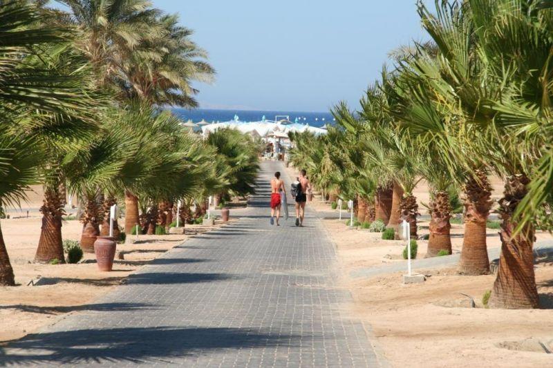 Летом в Египте весьма жарко