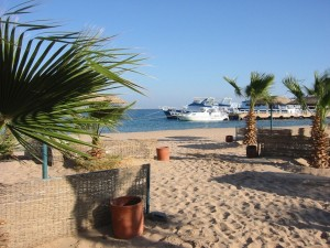 Незабываемый курортный отдых в Сафаге