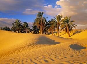 Природа Египта