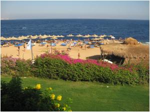 Отдых в Египте в сентебре