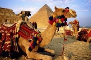 Сколько стоит путевка в Египет