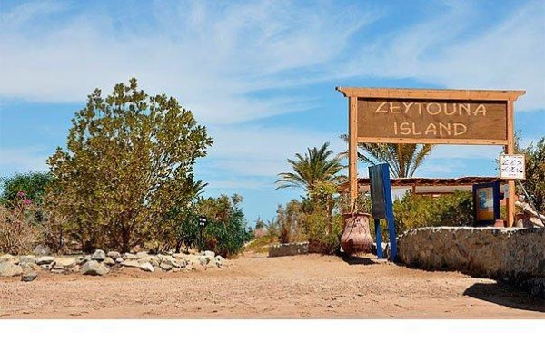 Остров Зейтуна